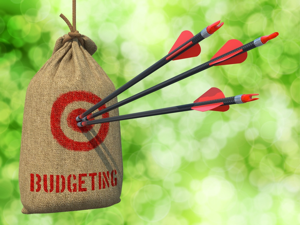 Budgeting - Three Arrows Hit in Red Target on a Hanging Sack on Green Bokeh Background..jpeg