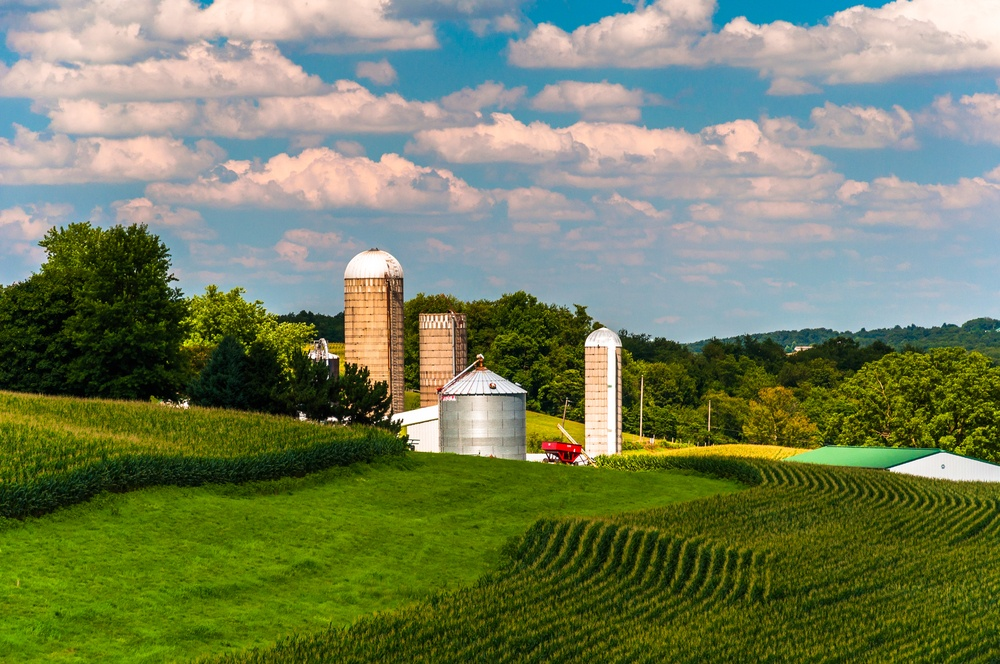 Corn fields and silos on a farm in Southern York County, Pennsylvania